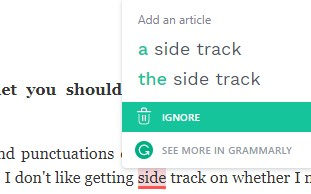 Grammarly Check