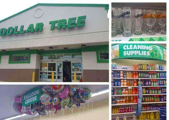 How to Shop at Dollar Tree Store